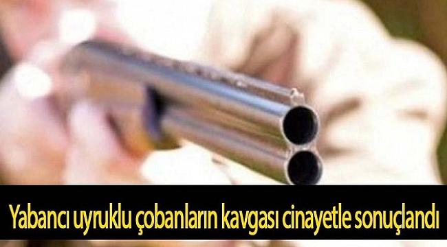 ÇOBANLARIN KAVGASI ÖLÜMLE BİTTİ