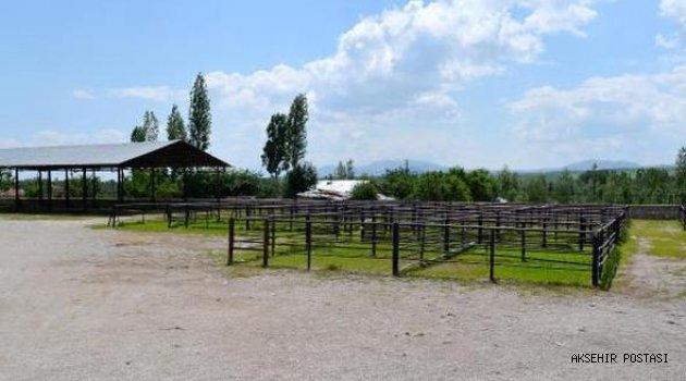 Yalvaç Hayvan Pazarı kapatıldı